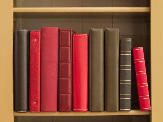 Books in a bookshelf PBE2JRY  1